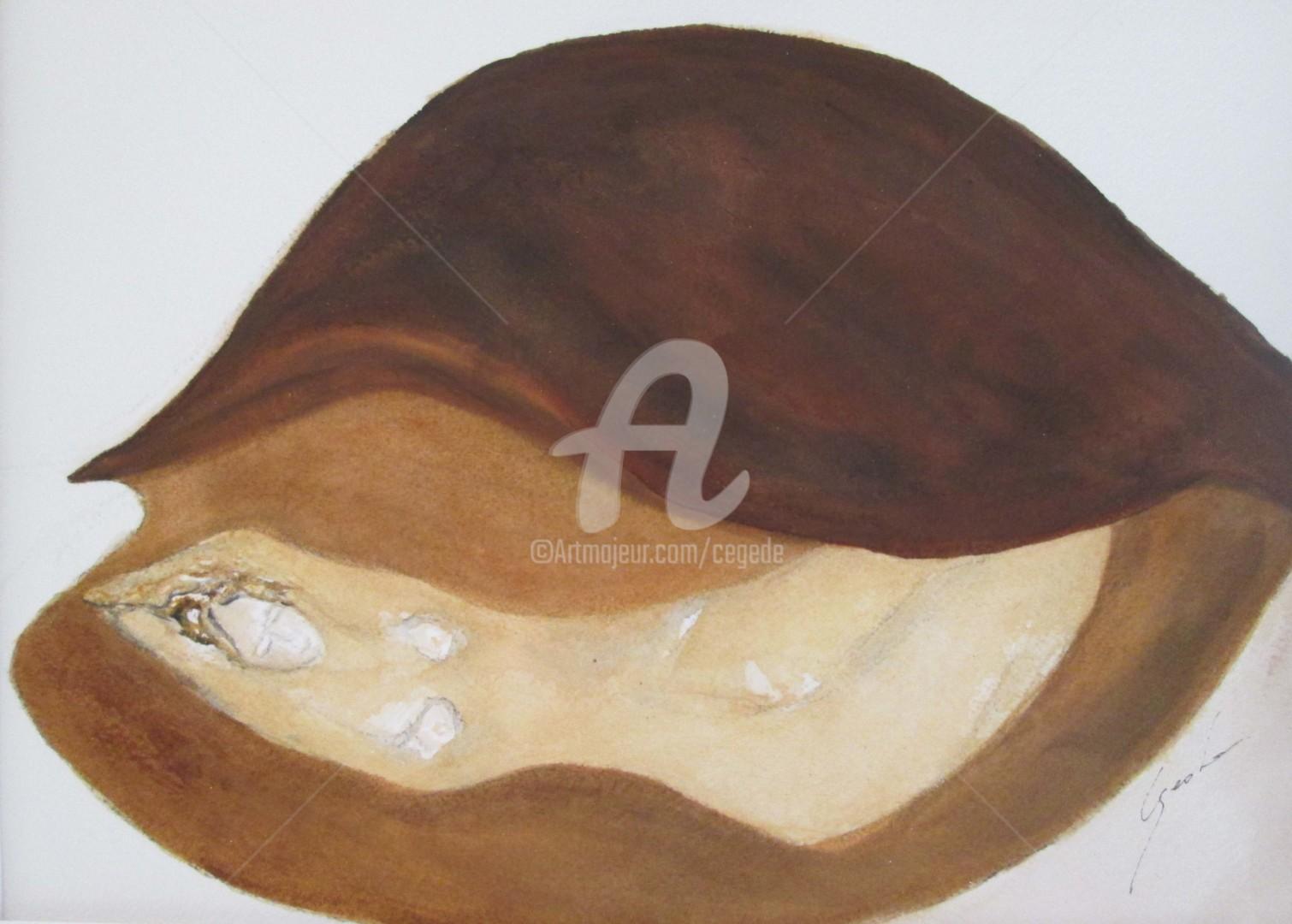 Cegede - fruit de mer
