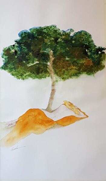 sieste sous le pin